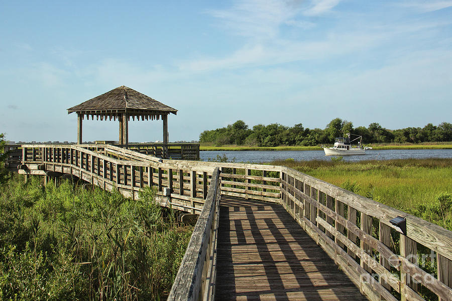 Southport Marsh Walk by Michelle Tinger