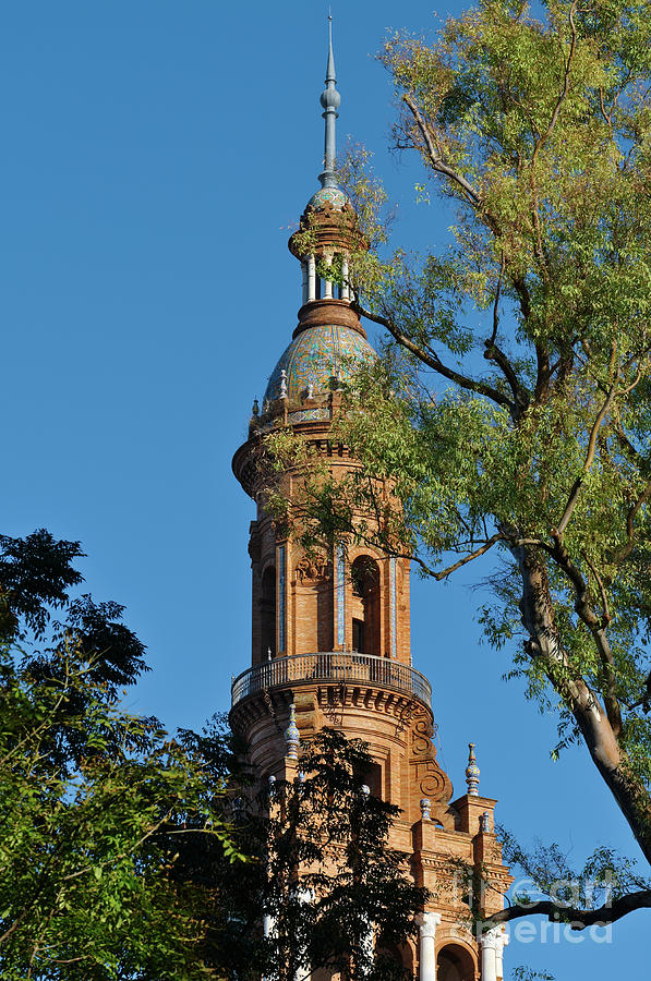 Spain Square Tower Detail and Trees in Seville by Angelo DeVal