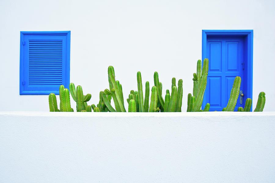 Spanish Garden Photograph by Caracterdesign