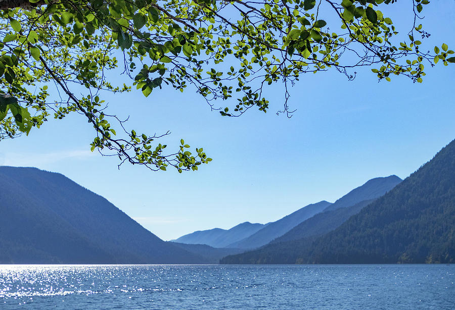 Sparkling Lake Crescent by Carolyn Derstine