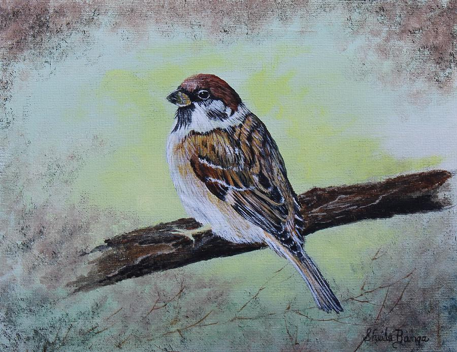 Sparrow - 1 by Sheila Banga