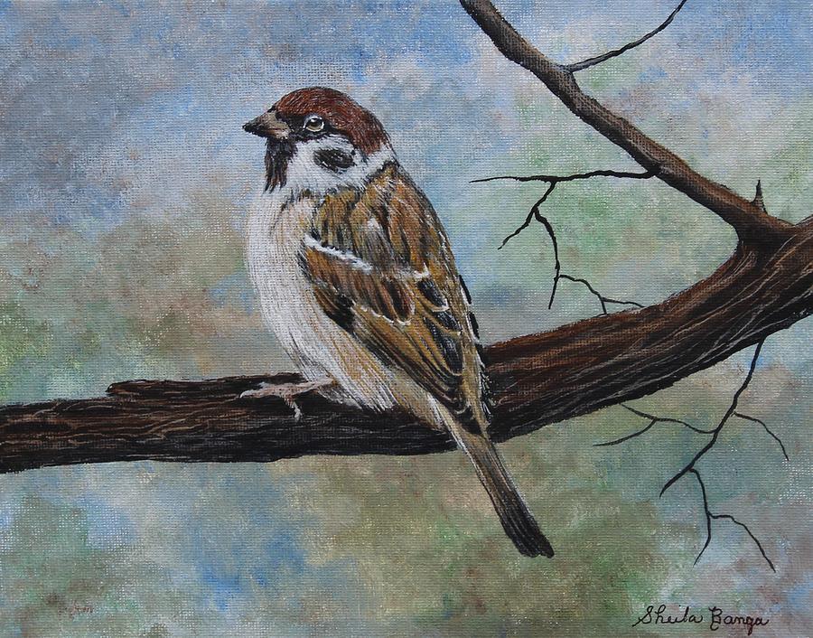 Sparrow 4 by Sheila Banga