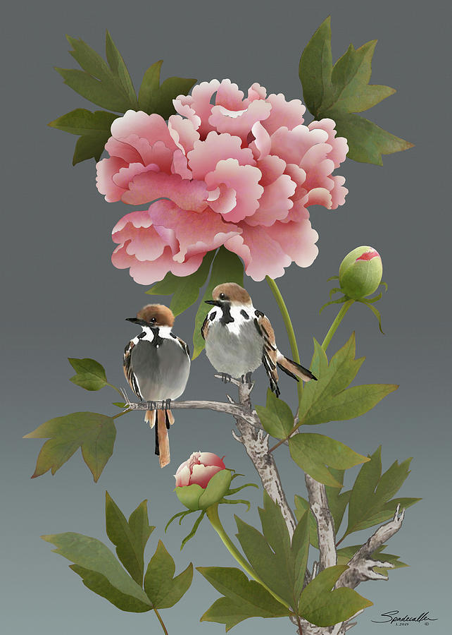 Sparrows and Peony by M Spadecaller