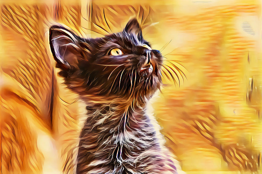 Special Long Neck Kitty by Don Northup