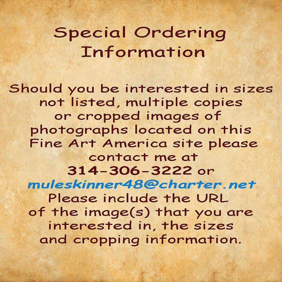 Special Ordering information by Greg Kluempers