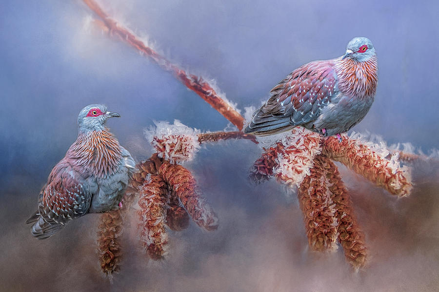 Speckled Pigeons by Cindy Lark Hartman