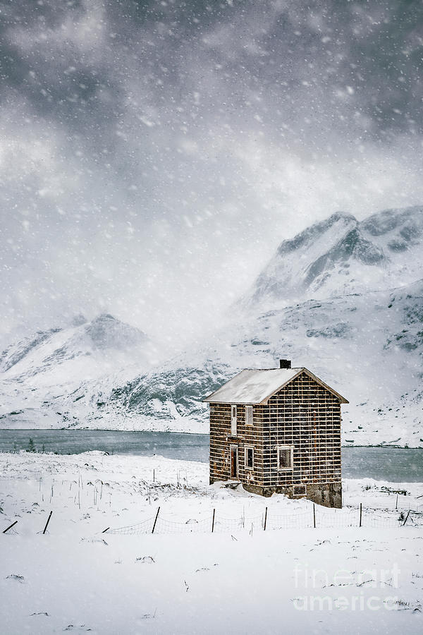 Spells Of Arctic Winters Photograph