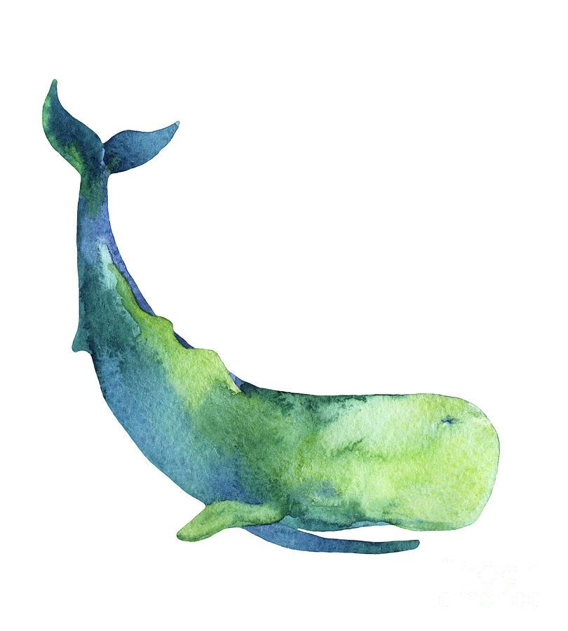 Sperm Whale Isolated On White Background Digital Art by Tanya Syrytsyna