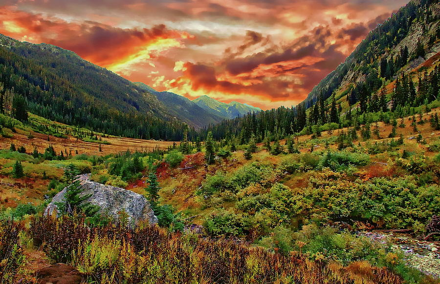 Spider Meadow Sunset Photograph