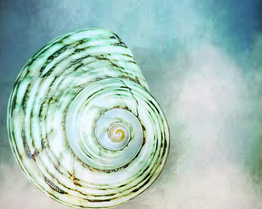 Spinning In The Clouds  by Kathi Mirto