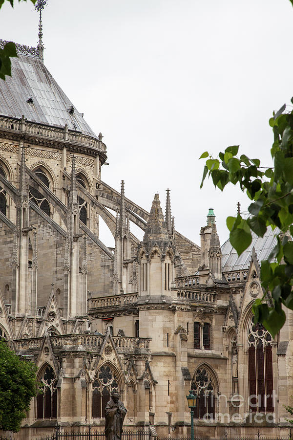 Spires of Notre Dame by Timothy Johnson