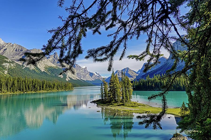 Spirit Island Maligne Lake Jasper National Park Alberta Canada Trees by Toby McGuire