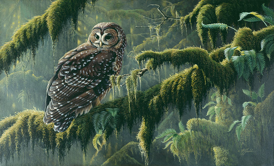 Animals Painting - Spirit Of Ancient Forests - Spotted Owl by Wilhelm Goebel