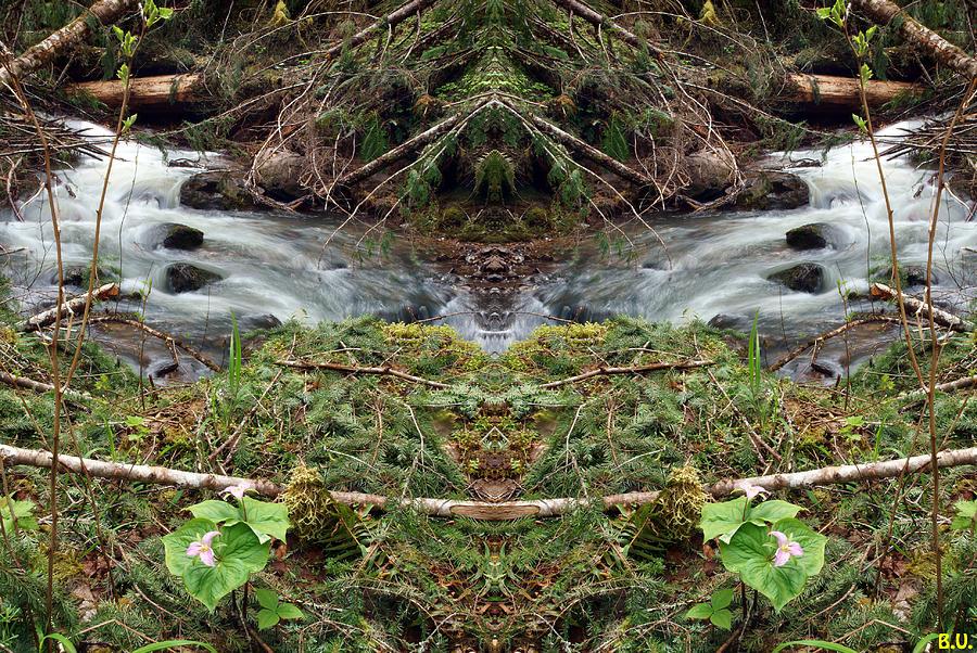 Spirit of Wilson Creek #1 by Ben Upham III