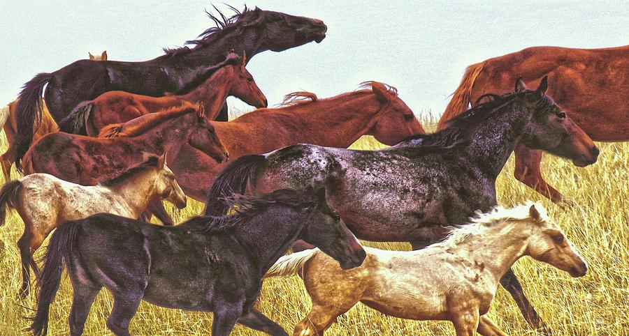 Spirit Races On The Prairie by Amanda Smith