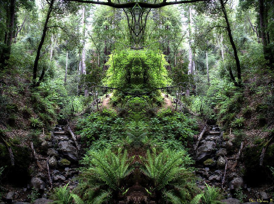 Spirits of Tamalpais #1 by Ben Upham III