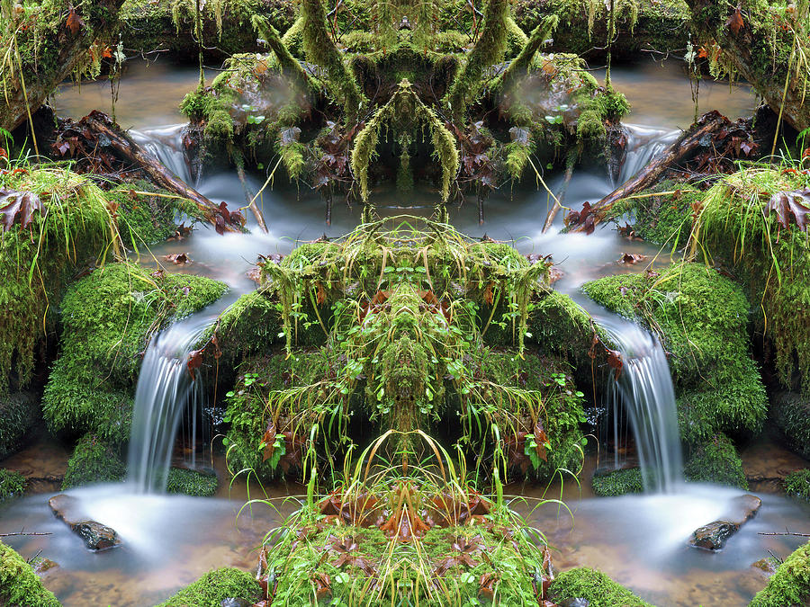 Spirits of the Creek #8 by Ben Upham III