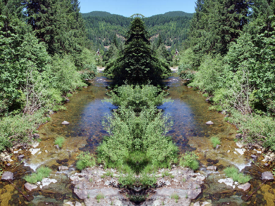Spirits of the Umpqua Forest #1 by Ben Upham III