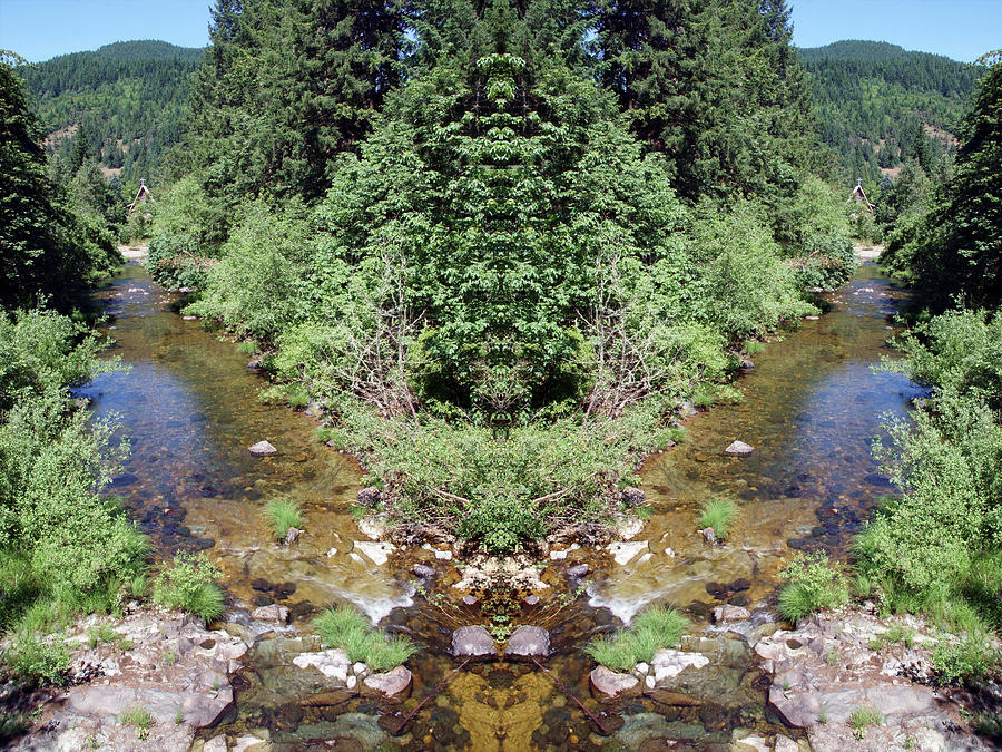 Spirits of the Umpqua Forest #2 by Ben Upham III