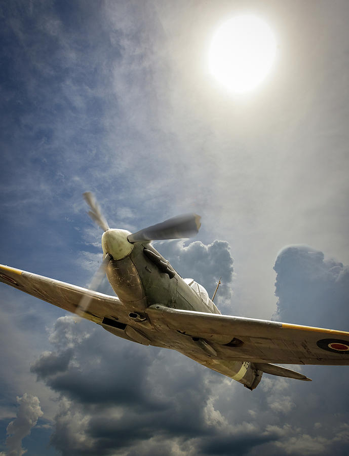 Spitfire Under the Sun by Philip Rispin