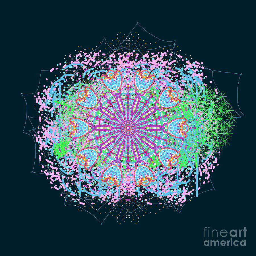 Splattered Floral Abstract Mandala by Catherine Lott