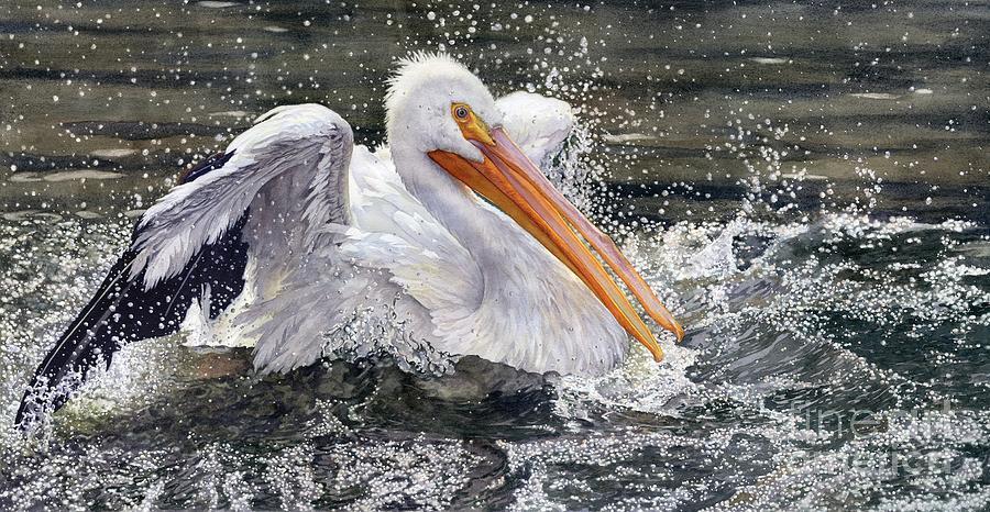 Pelican Painting - Splish Splash by Lorraine Watry