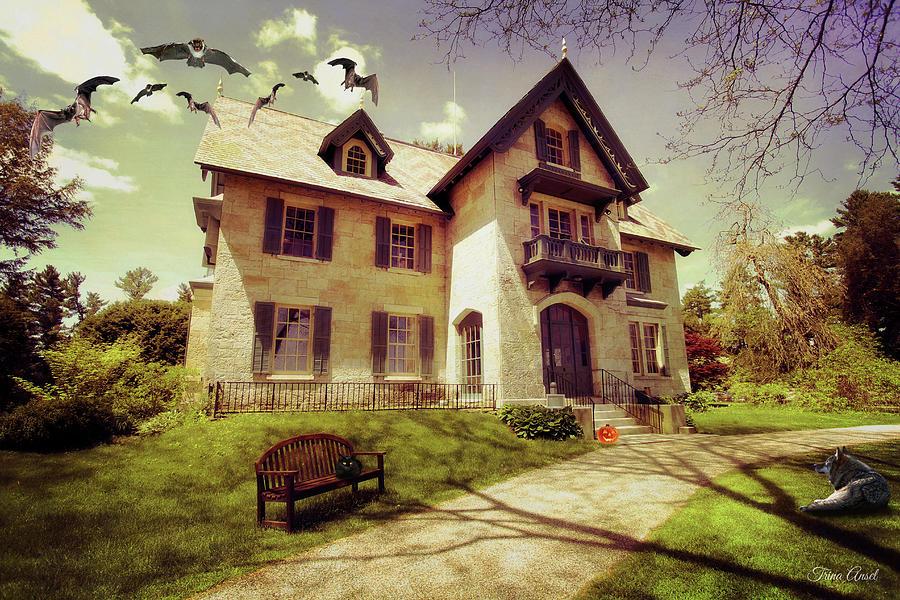 Spooky Mansion  by Trina Ansel