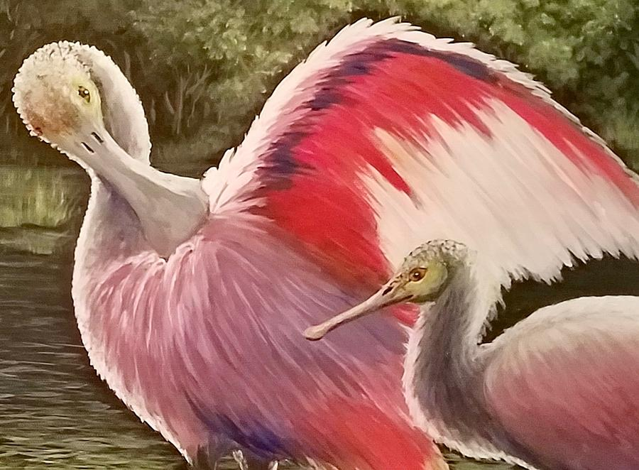 Spoonbills Painting - Spoonbills by Dara Dodson
