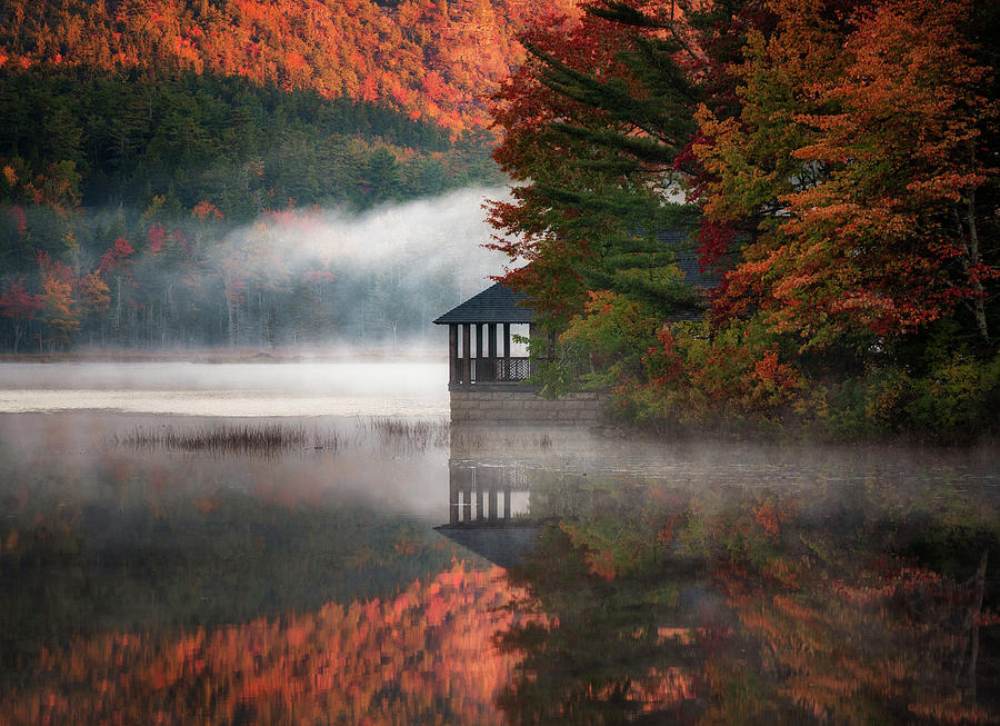 Spot for Morning Coffee by Darylann Leonard Photography