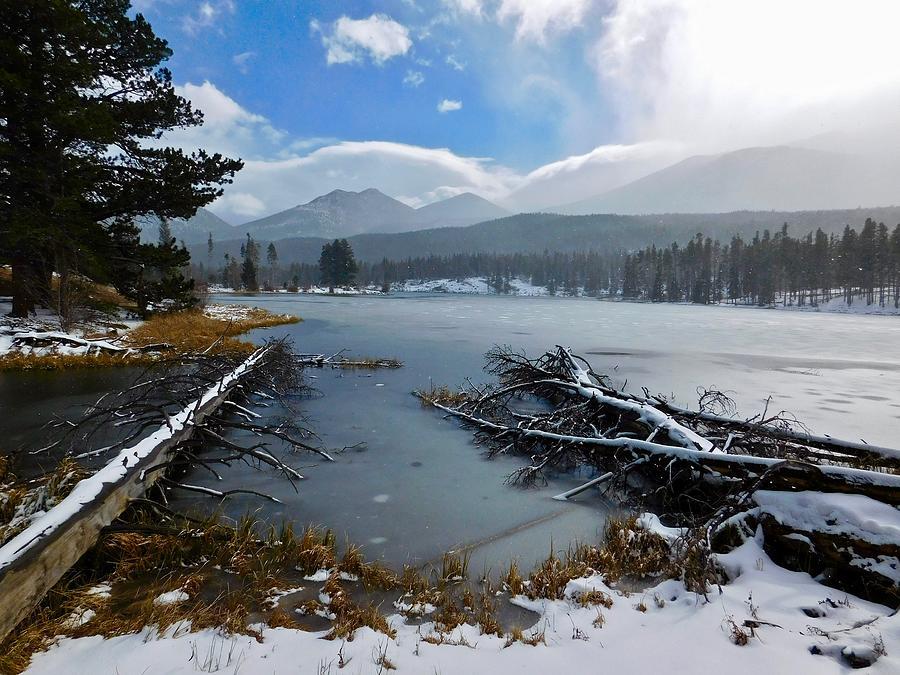 Sprague Lake by Dan Miller