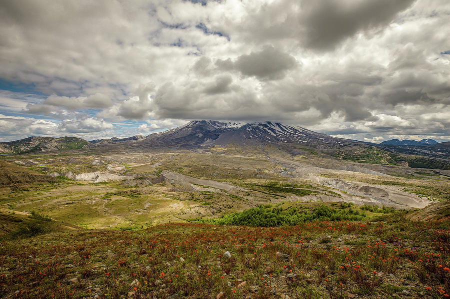 Spring At Mt. St. Helens Photograph