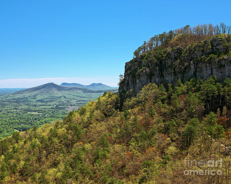 Spring at Pilot Mountain by Patrick M Lynch