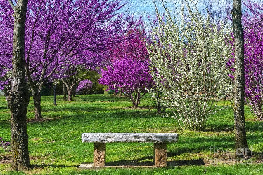 Spring Bench Painterly by Jennifer White