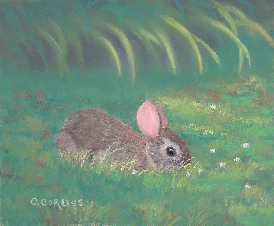 Spring Clover by Carol Corliss