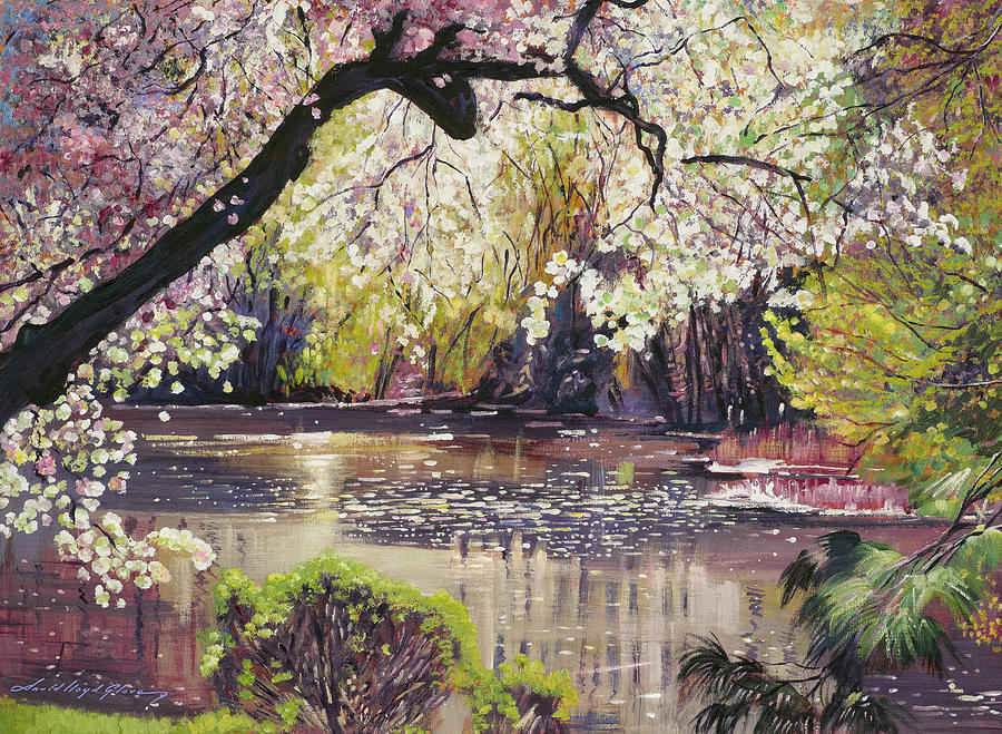 SPRING COLORS AT THE POND by David Lloyd Glover