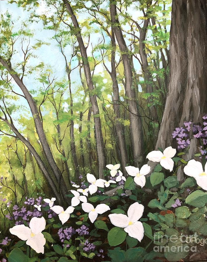 Spring forest trillium blooms by Inese Poga