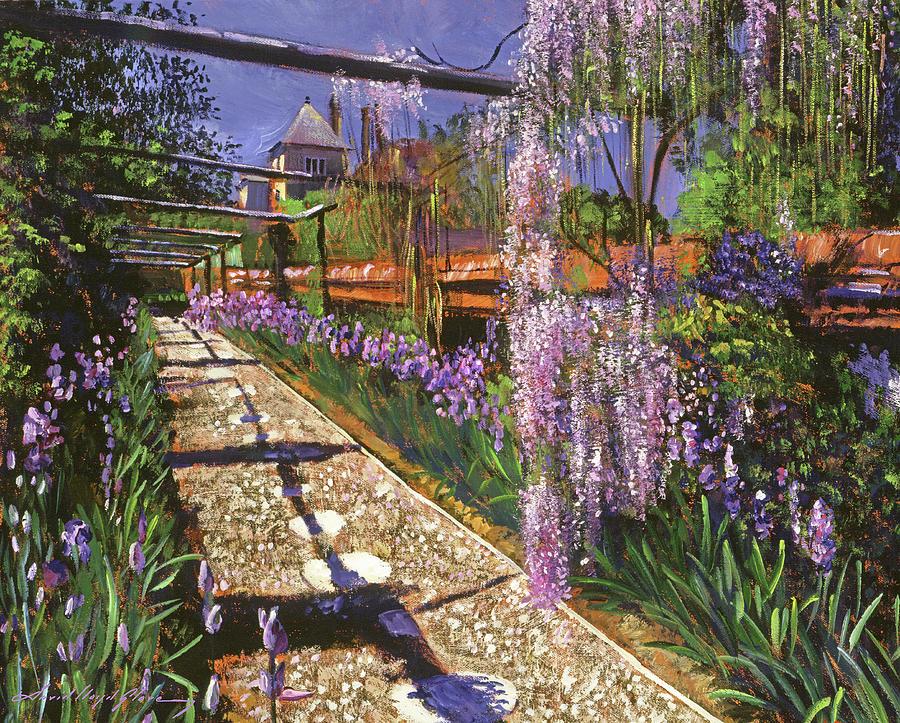 SPRING GARDEN WISTERIA by David Lloyd Glover
