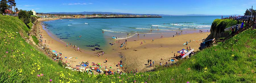 Spring In Santa Cruz Panorama Photograph