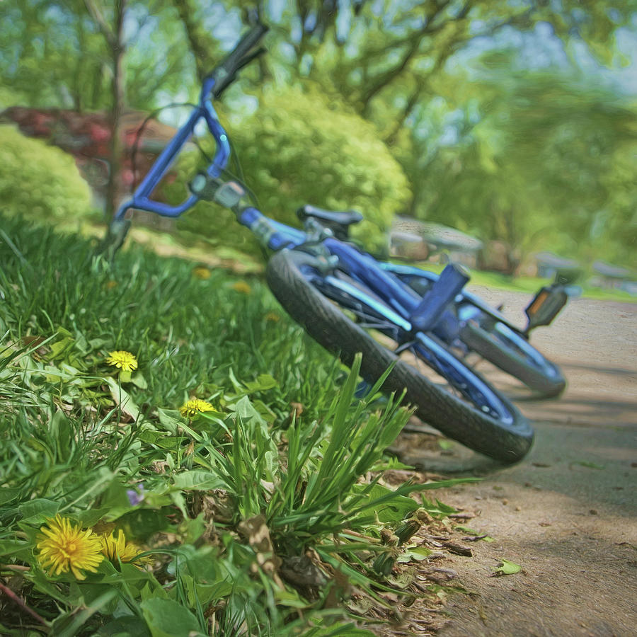 Bicycle Photograph - Spring In The Neighborhood by Nikolyn McDonald
