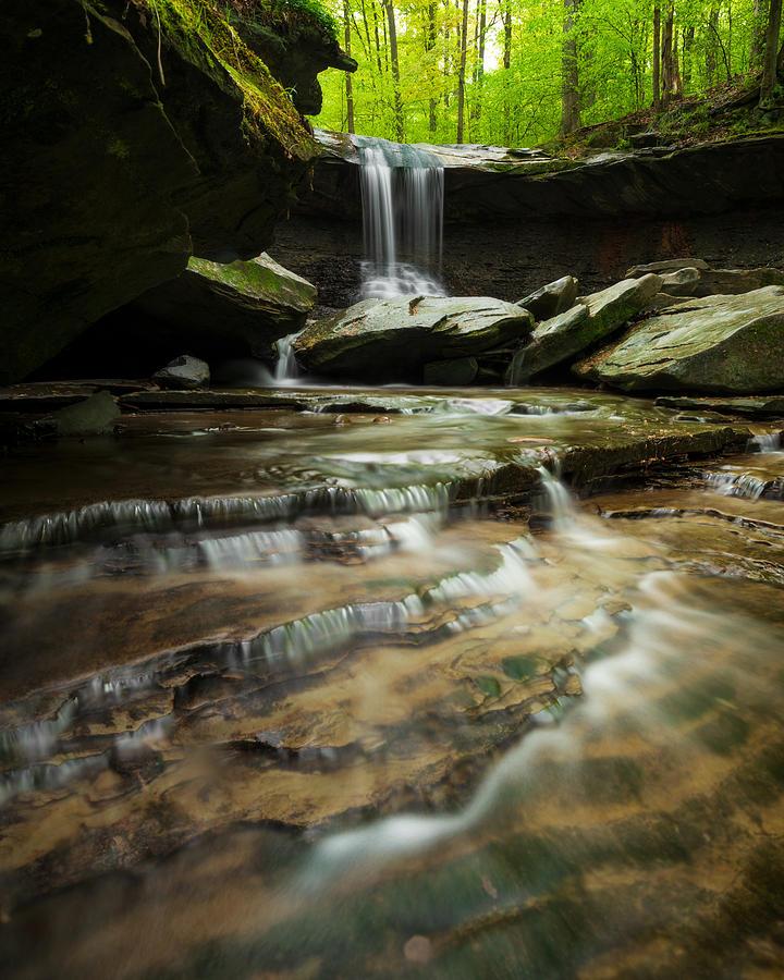 Spring in the Valley 2 by Matt Hammerstein