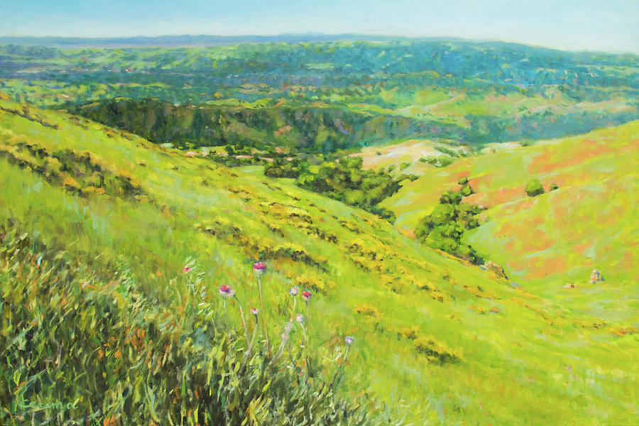 Spring on Mount Diablo No. 4 by Kerima Swain