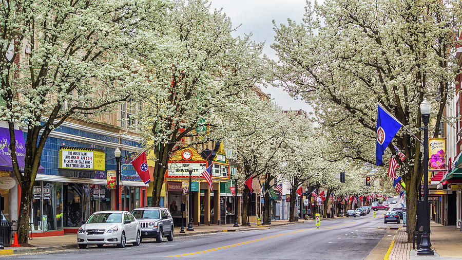 Spring On State Street 2016 Photograph