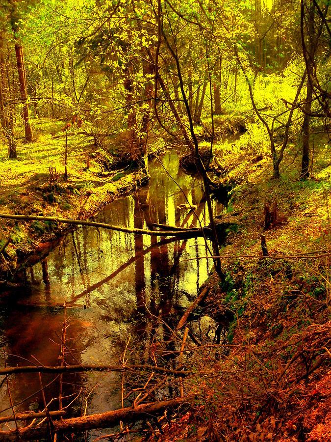 Spring on the Lubianka River by Henryk Gorecki
