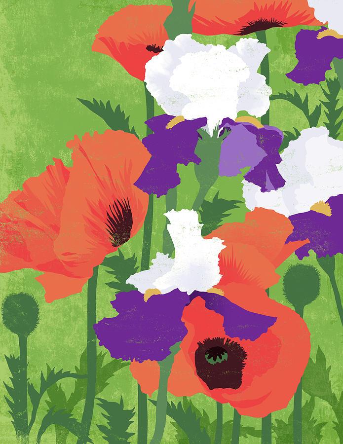 Spring Poppies Digital Art by Don Bishop