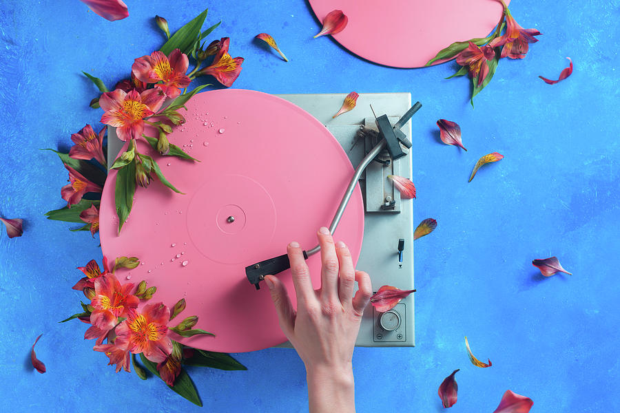 Pink Photograph - Spring Record by Dina Belenko