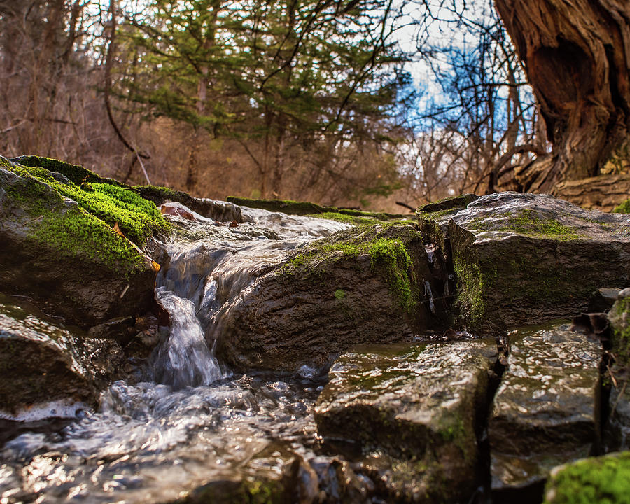 Spring Runoff by Jeff Phillippi