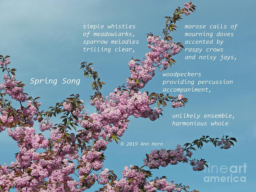 Spring Song by Ann Horn