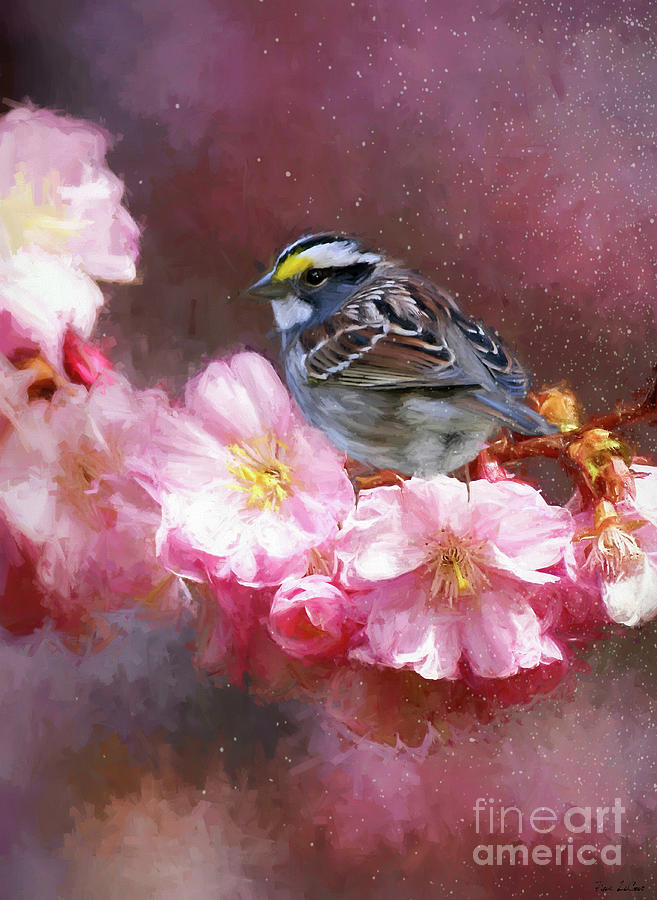 Spring Sparrow Digital Art