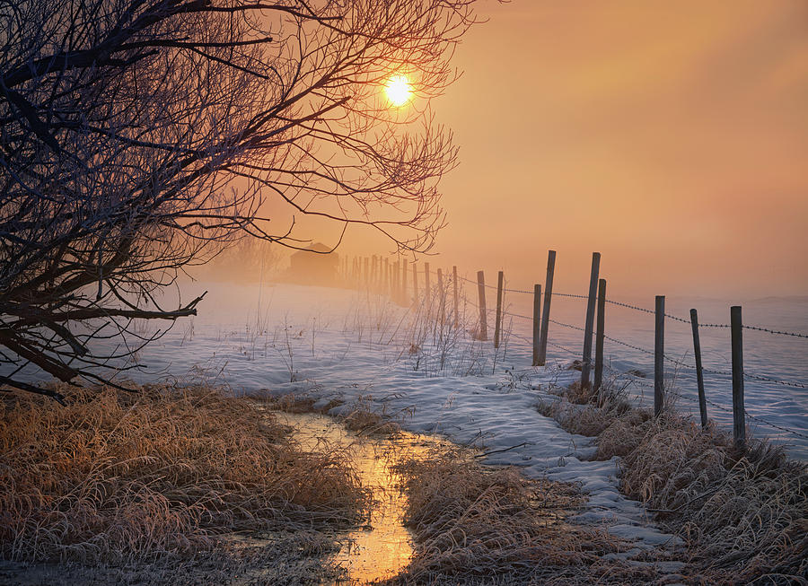 Spring Time in Alberta by Dan Jurak