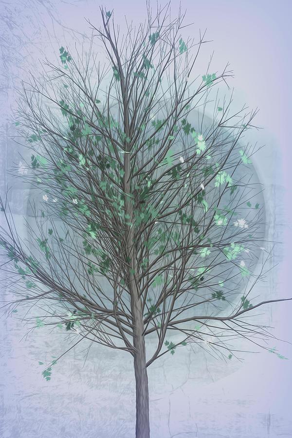 Spring Tree in Cool Grays by Debra and Dave Vanderlaan